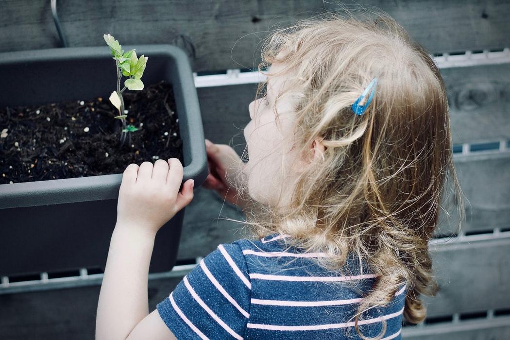 children-gardening